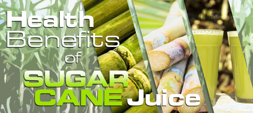 What is a Sugarcane?