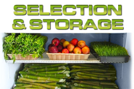 Sugarcane Selection Process & Storage
